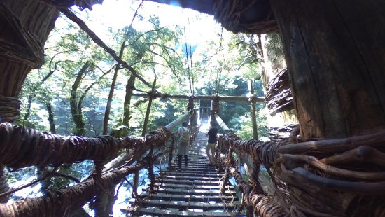 Iya Kazura Bridge: photo0.jpg