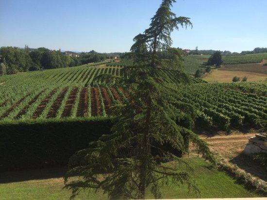 Rocca Grimalda, Italia: vue des chambres