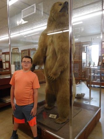 Galax, VA: Huge polar bear