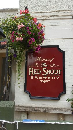 Ringwood, UK : The Red Shoot
