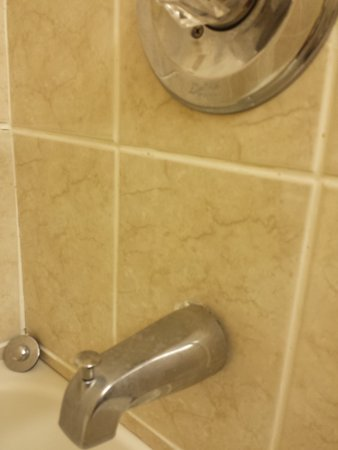 Econo Lodge: tub spout and shower control needs a good scrubbing