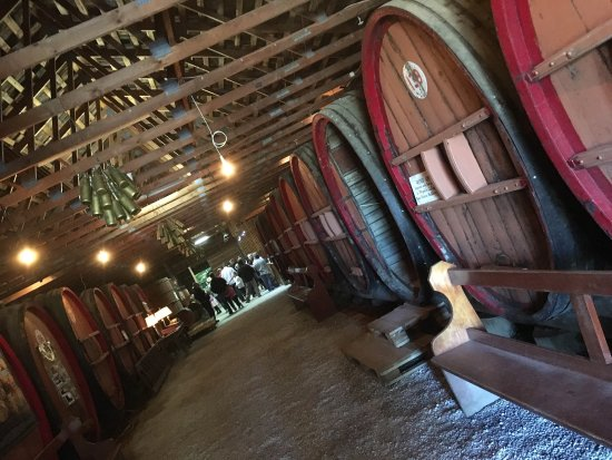 Pieter van Gent Winery & Vineyard: photo0.jpg