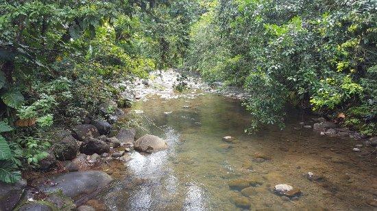 Parc National, Guadeloupe: Route de la Traversee