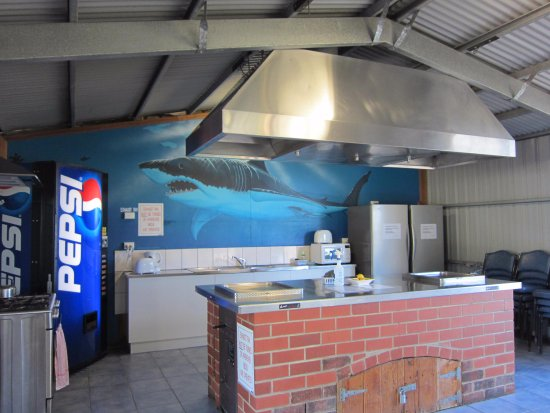 Marion Bay, Australia: Camp Kitchen