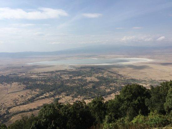 Ngorongoro Wildlife Lodge: クレーターの眺めは最高です 電気使用時間、お湯の使用時間の制限があります 夜は寒いですが、暖炉があるため 暖炉前に行けば暖かいです 毛布も借りることができます  敷地内には稀に動物が来ます 宿
