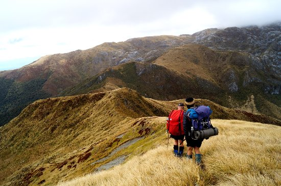 Rangiora, Nueva Zelanda: Hiking in Kahurangi near Mt. Arthur