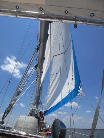 Compass Sailing, LLC : photo3.jpg