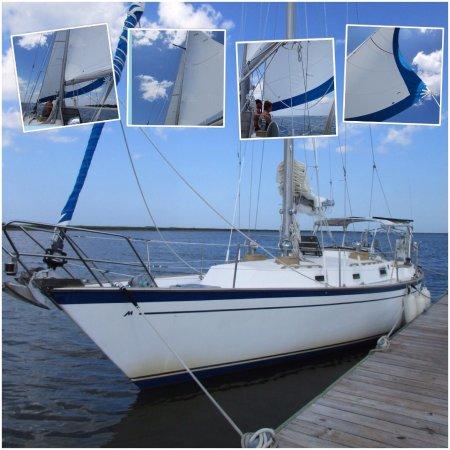 Sailing Tours Savannah Ga