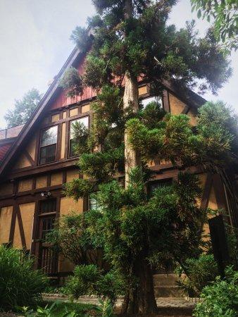 Montclair, Nueva Jersey: Gorgeous garden. Very relaxing!