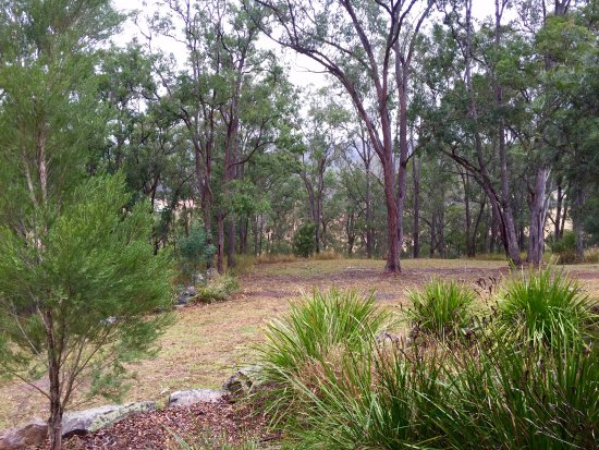 Wollombi, Australia: View from the front deck