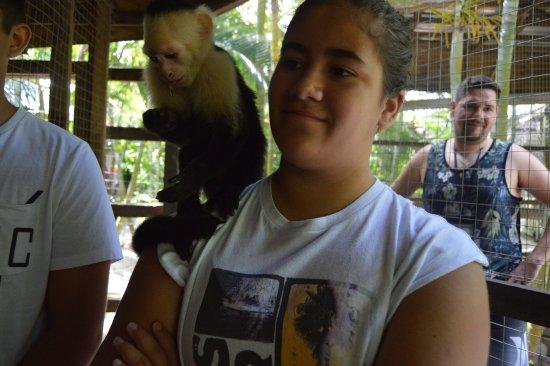 Sandy Bay, Honduras: Monkey Business