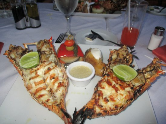 The Level At Melia Caribe Tropical Steak And Lobster Restaurant Best Lobsters