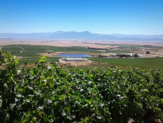 Riebeek-West, South Africa: Wines with a view!