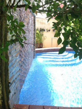 Golden Banana Bed & Breakfast & Superior Hotel: Swimming Pool view