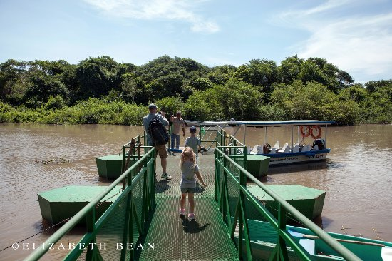 Playa Hermosa, Costa Rica: Our own river boat on the Palo Verde Boat Tour