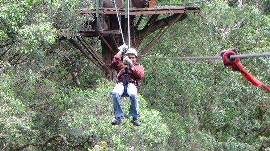 Storms River, Afrika Selatan: Tsitsikamma Canopy Tours