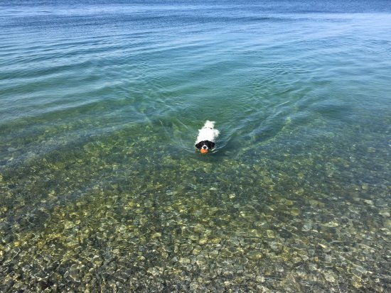 Prince Edward County, Kanada: Clear water