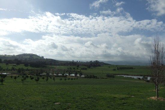 Yarra Glen, Australien: View from Yarra Valley Chocolaterie