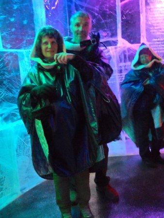 Nordic C Hotel: inside ice bar