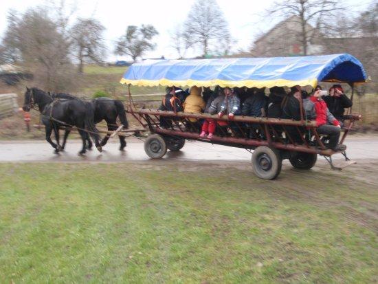 Szymbark, Polen: My beautiful family having fun in the coach ...