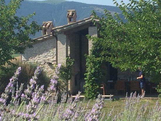 Cagli, إيطاليا: Agriturismo Molleone