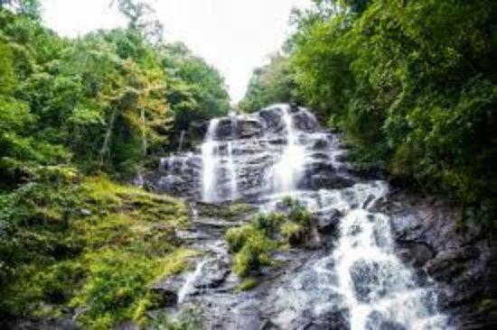 Amicalola Falls State Park: Falls.