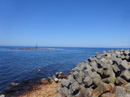 Haboro-cho, Japan: 海岸線にはアザラシもいました