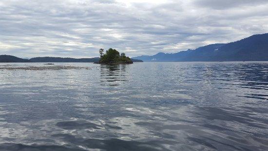 Alert Bay, Канада: 20160711_093942_large.jpg