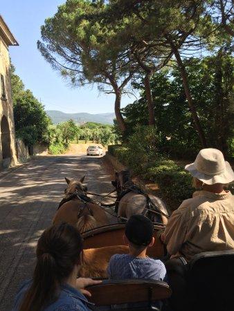 Tuoro sul Trasimeno, Italia: passeggiata in carrozza