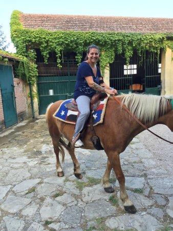 Tuoro sul Trasimeno, Italia: cavallo