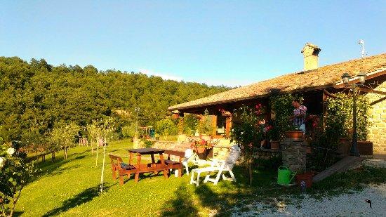 Agriturismo Ponte di Riocchio : P_20160716_190718_large.jpg