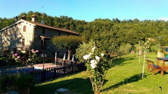 Agriturismo Ponte di Riocchio : P_20160716_190712_large.jpg