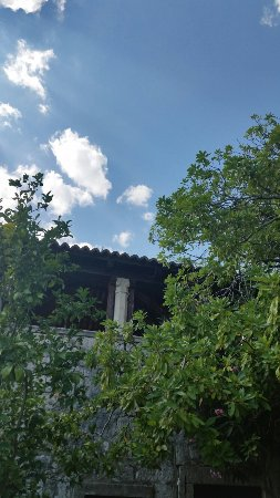 Trsteno, Croacia: 20160718_153510_large.jpg