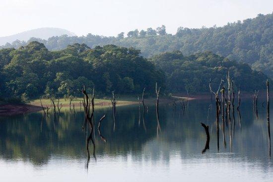 Idukki, India: Thekkady
