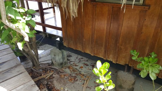 St. George's Caye, Belize: There is no water under the 'over water' cabana...
