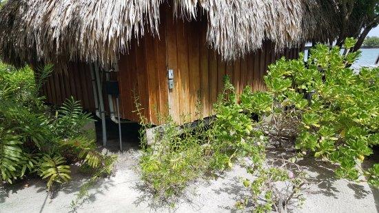 St. George's Caye, Belize: The is the back of the over water cabana - the rooms are VERY hot and NO A/C in the bath area.