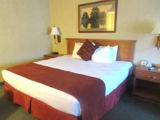 Comfortable King Size Bed,  Best Western Shadow Inn, Woodland, Ca