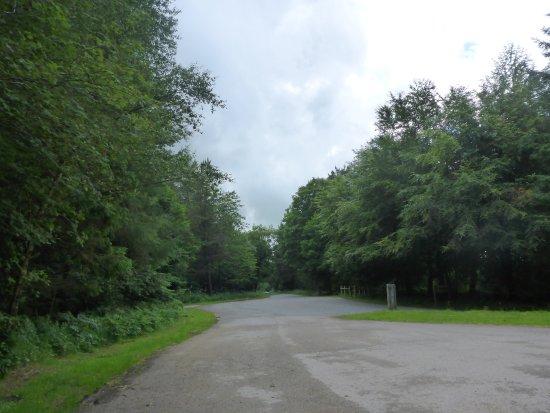 Pickering, UK: Scenic Roads