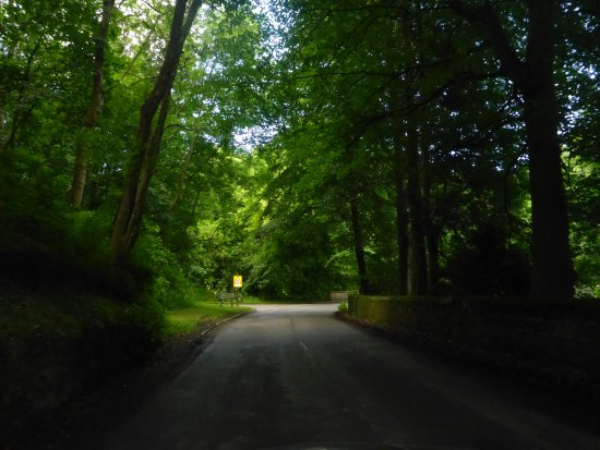 Pickering, UK: Awesome Roads