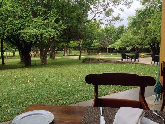 Amaya Lake: restaurante buffet