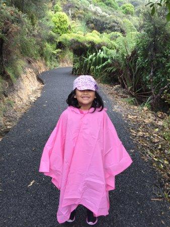 Коромандел, Новая Зеландия: photo2.jpg