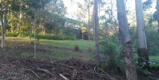 Eumundi, Austrália: 20160719_163929_large.jpg