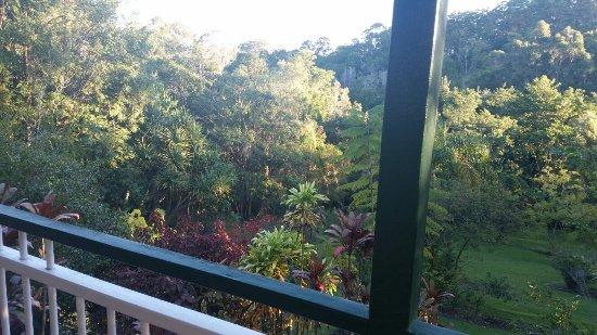 Eumundi, Austrália: 20160719_163145_large.jpg