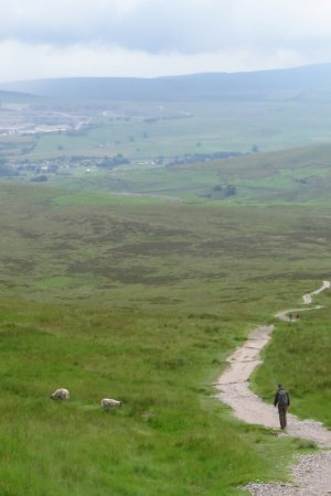 Horton-in-Ribblesdale, UK: Decent of Pen-Y-Ghent along the Pennine Way, June 2016