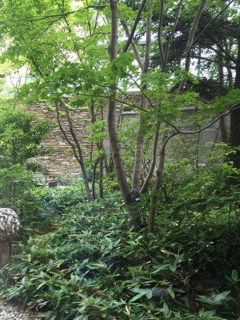 Hyatt Regency Hakone Resort and Spa: Courtyard