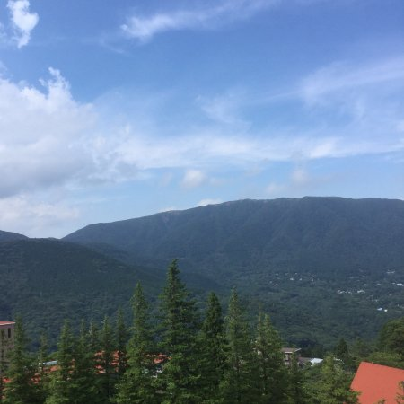 Hyatt Regency Hakone Resort and Spa: Mountain View Room