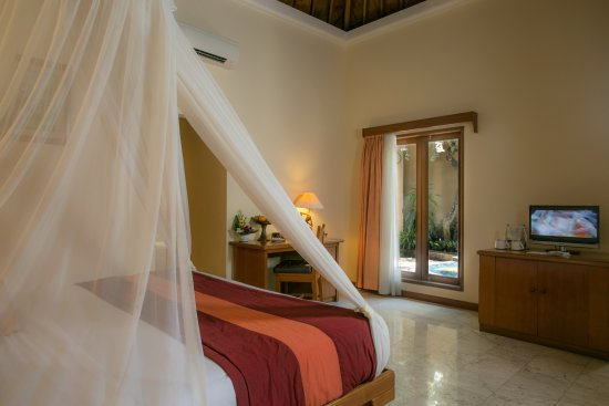 Parigata Spa Villas: Villa room
