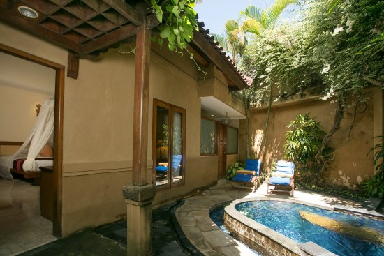 Parigata Spa Villas: plunge pool