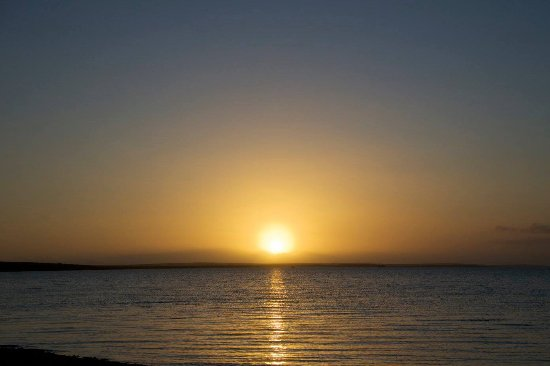 Monkey Mia, أستراليا: Sunset from resorts bar