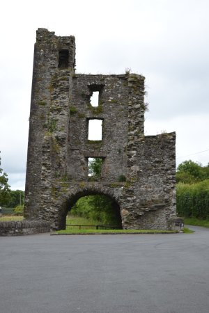 Mellifont Abbey : Entrance